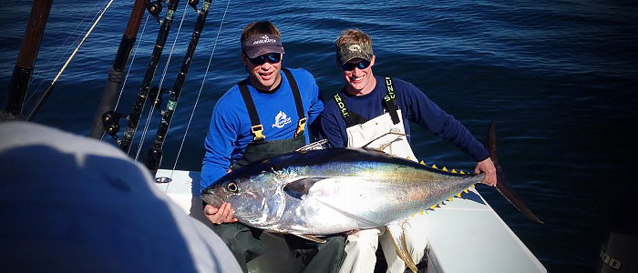 yellowfin tuna photo winter fishing mexican gulf fishing co.