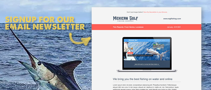 Signup for mgfc 39 s email newsletter fish reports venice la for Mexican gulf fishing company