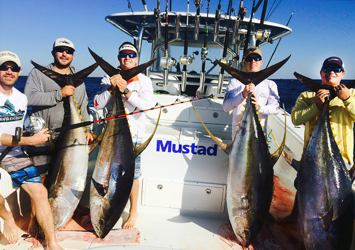 Yellowfin tuna and pro gear in venice louisiana for Tuna fishing louisiana