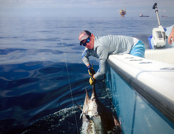 Collin byrd billy wells help charter land nice blue marlin for Venice la fishing report