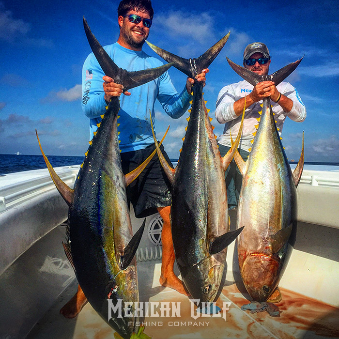 Offshore charter fishing parker rodrigue wade wells for Mexican gulf fishing company