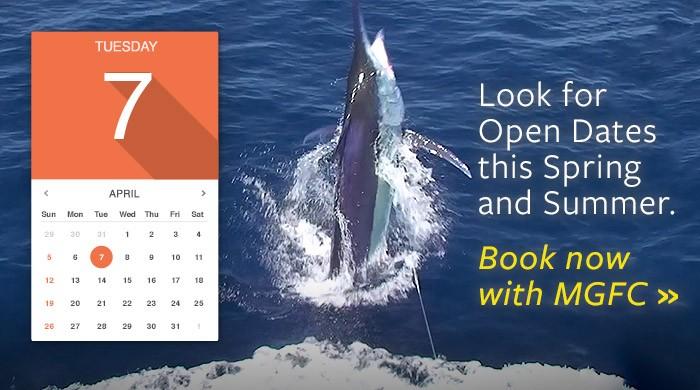 book charter fishing venice, la. MGFC photo. Book fishing charters