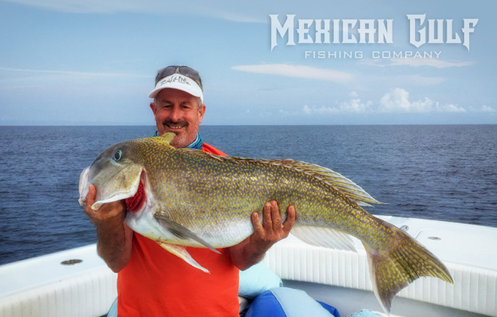 golden tilefish louisiana. MGFC photo of tilefish. Offshore charter fishing louisiana