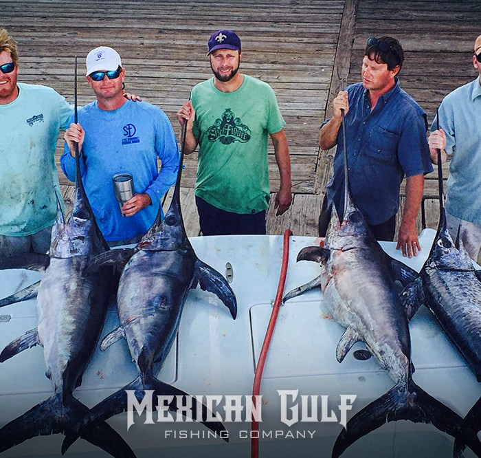 swordfish charters, la. Four swordfish daytime. MGFC photo, Jordan Ellis