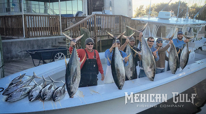 Tuna fishing venice la winter tuna fishing rocks tuna for Mexican gulf fishing company